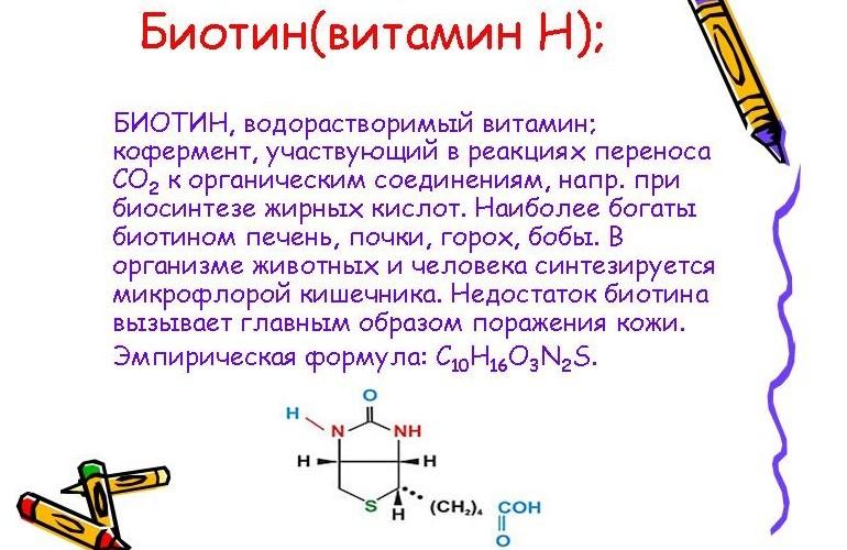 Влияние биотина на организм