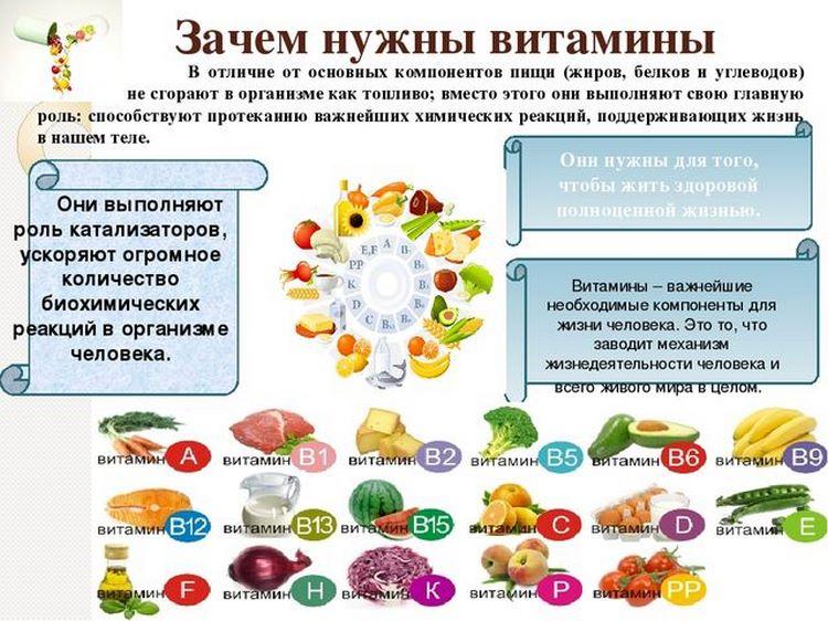 предназначение витаминов