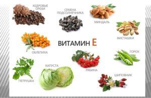 Продукты с наибольшим содержанием витамина Е