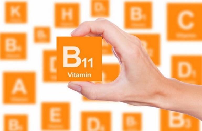 Применение и польза витамина В11