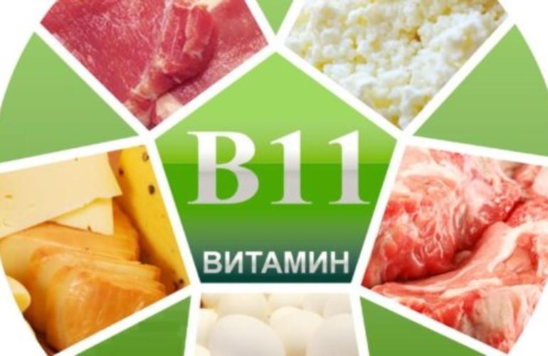 Для организма человека витамин В11