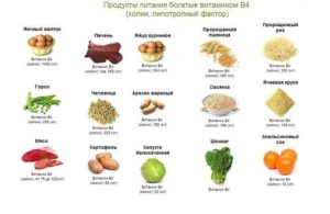 Содержание витамина В4 в пищевых продуктах