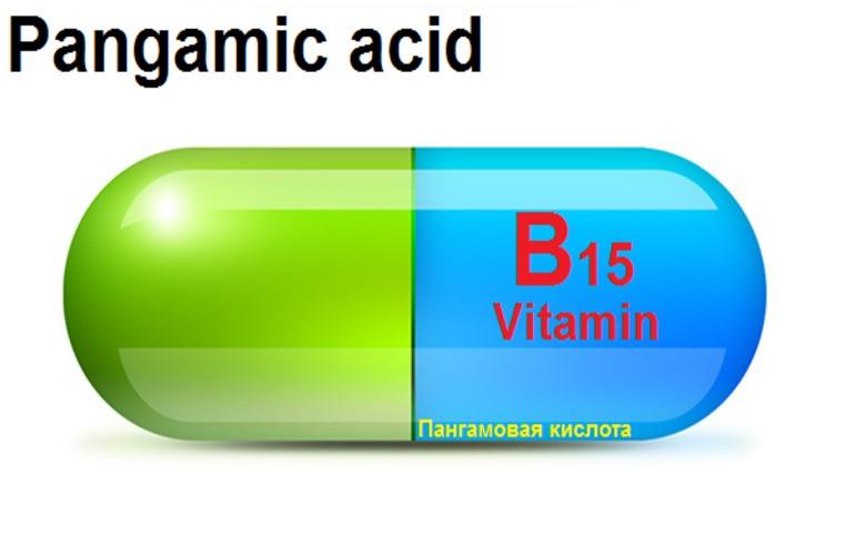 Польза и показания для применения витамина В15
