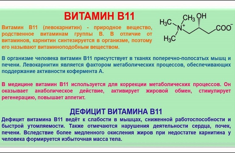 Характеристика для применения витамина В11
