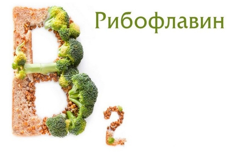 Роль витамина В2 в организме человека