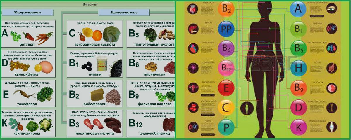 Картинки с таблицей витаминов