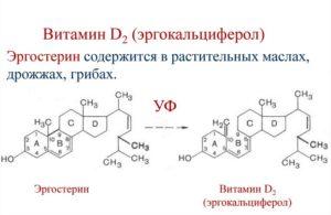Синтез эргокальциферола