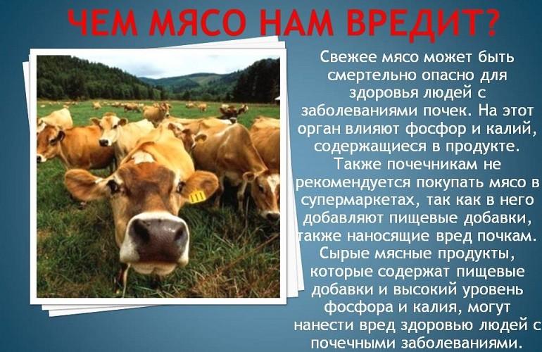 Вредные свойства мяса
