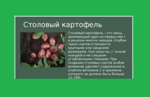 Столовый картофель