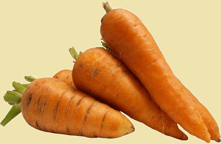 Витамины в моркови