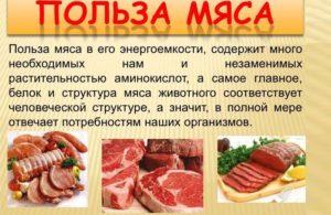 Польза употребления мяса