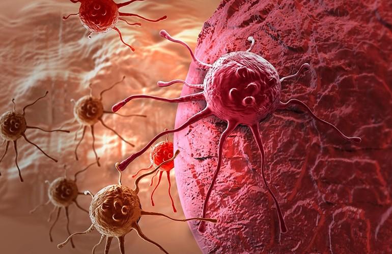 Борются с раком